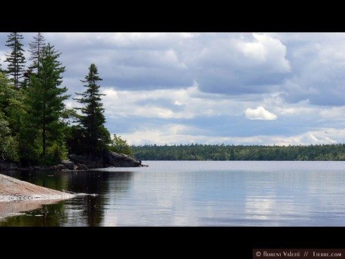 My PhD field site - Dollar Lake Provincial Park. Photo: FValetti