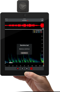Echo Meter Touch bat detector. From wildlifeacoustics.com